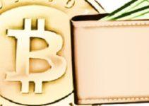 Elegir el mejor monedero Bitcoin