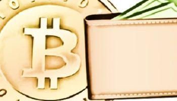 Cómo elegir el mejor monedero Bitcoin