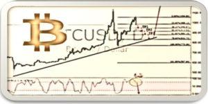 Guía principiante del análisis fundamental del Bitcoin