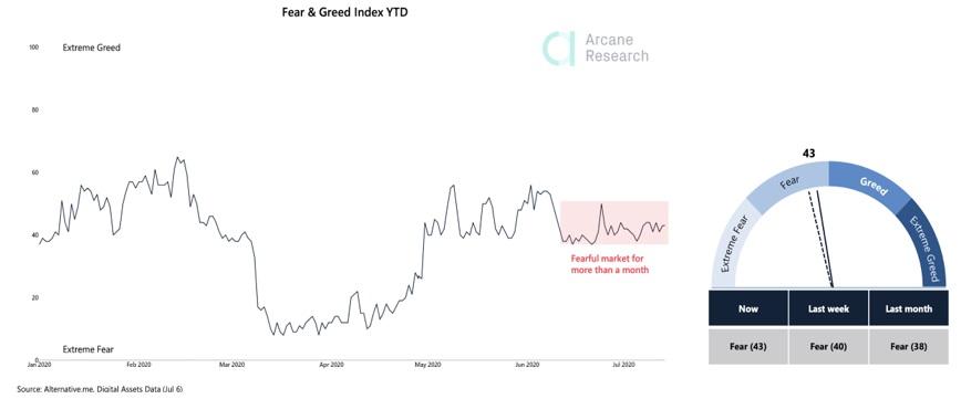 Fear & Greed Index YTD. Prime XBT