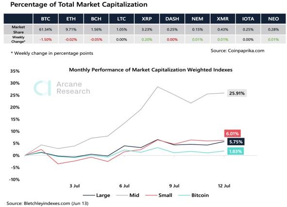 Porcentaje total del mercado de capitalización. Prime XBT